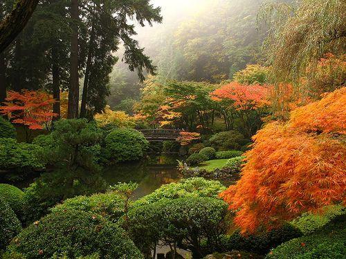 Jardines feng shui terrazas y jardines fotos de jardines for Zen terras layouts