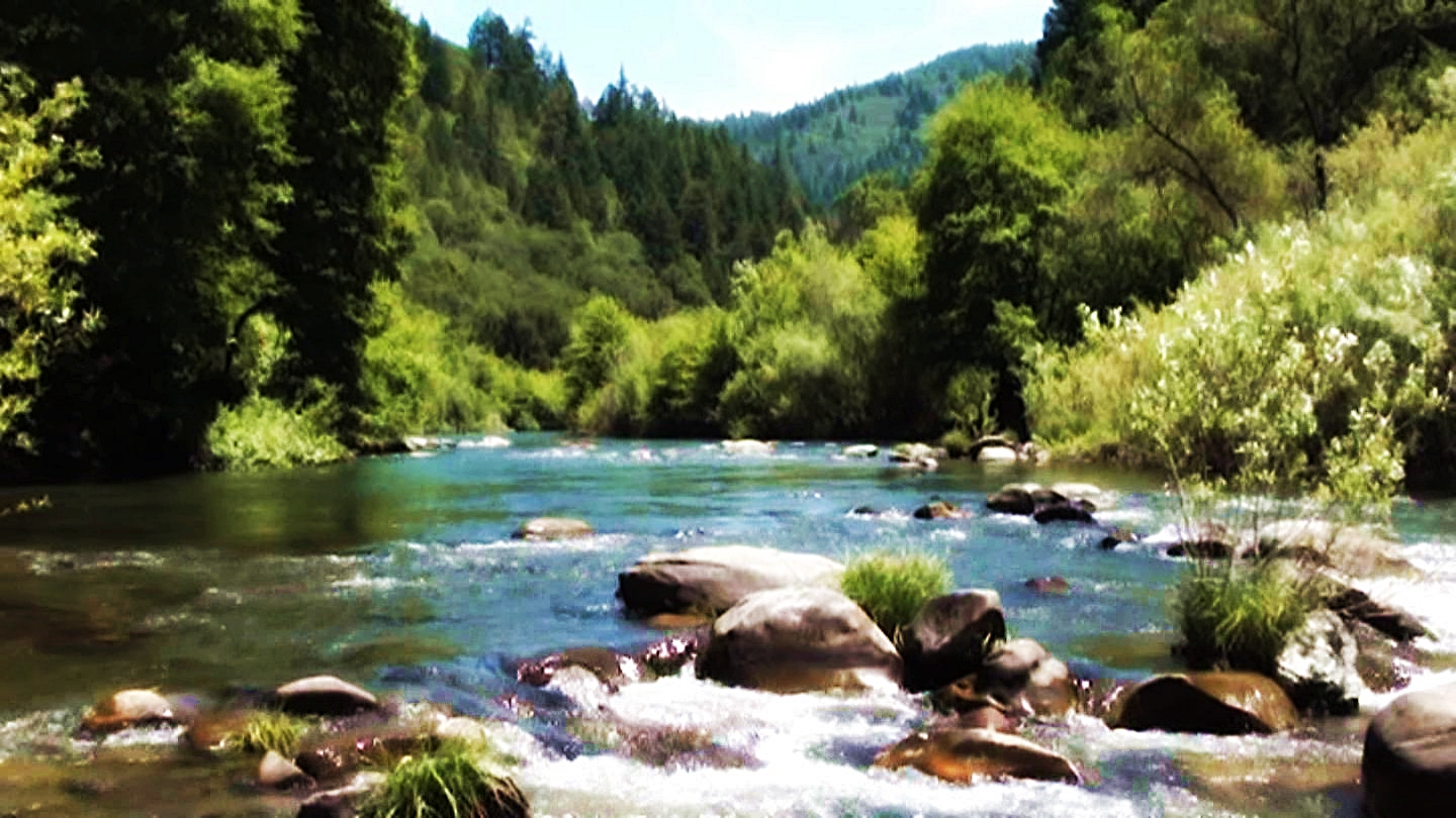 exploring norcal: trout creek campground – eel river