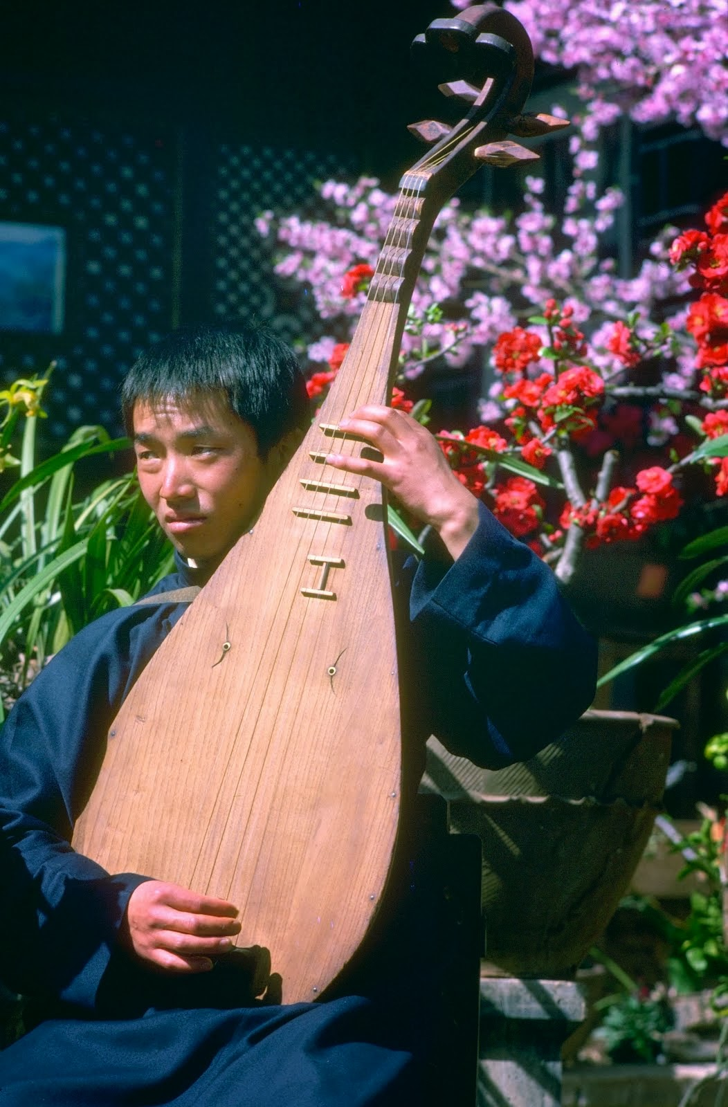 Naxi lute player