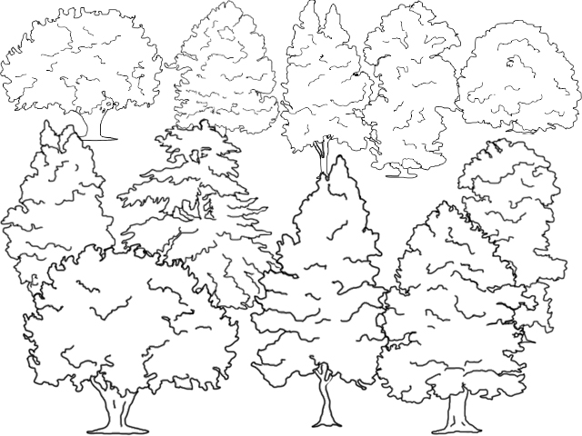 Trees a Crowd movie scenes  scene of the movie I also helped with developing the idea linking the different scenes together and few of my drawings were used in the first scene