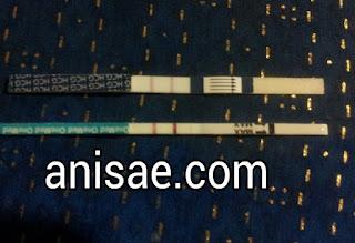 anisae.com