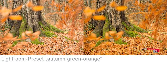 kostenloses herbstliches Lightroom-Preset Autumn green-orange