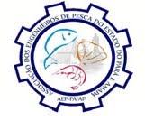 Site - AEP- Pará e Amapá