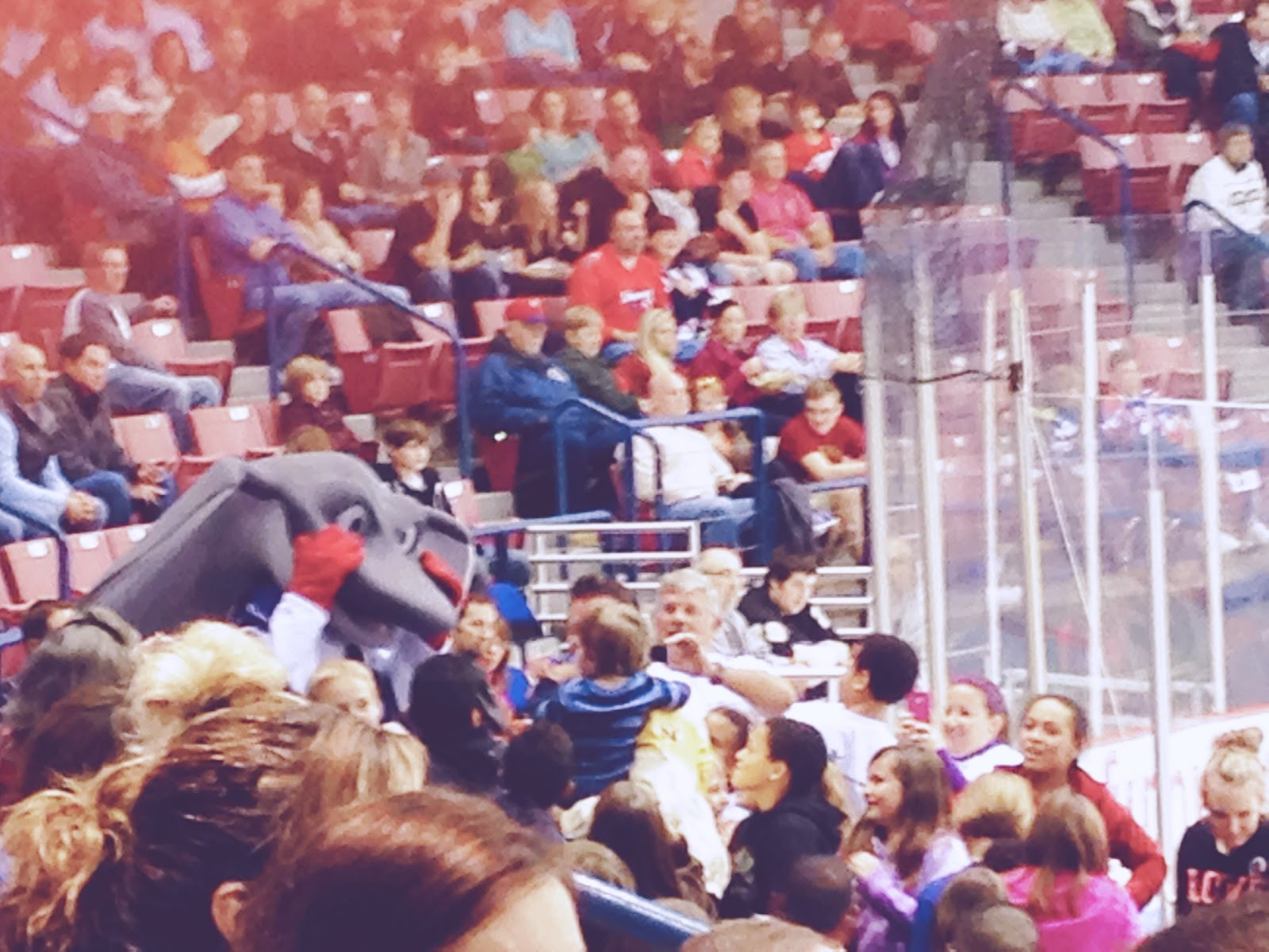 South Carolina Stingrays Hockey Cool Ray