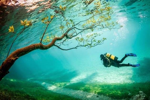 National Geographic photo contest