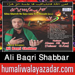 http://www.humaliwalayazadar.com/2015/10/ali-baqri-shabbar-nohay-2016.html