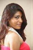actress Gayatri glamorous photos-thumbnail-11