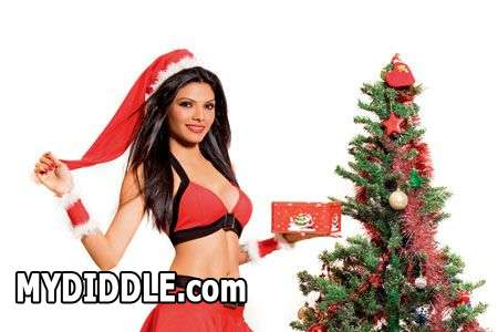 Bollywood Heroine Sherlyn Chopra in Santa Dress1 - Sherlyn Chopra as Sexy Santa