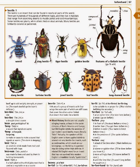 Merriam-Webster Children's Dictionary  sample 1