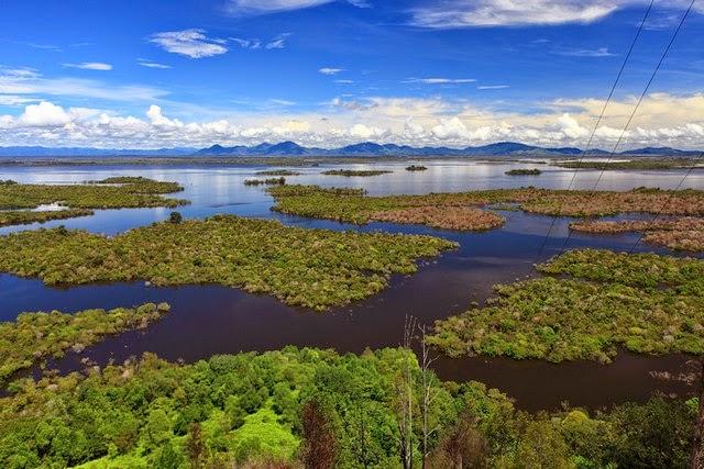 Pelestarian Jantung Borneo Butuh Langkah Konkrit