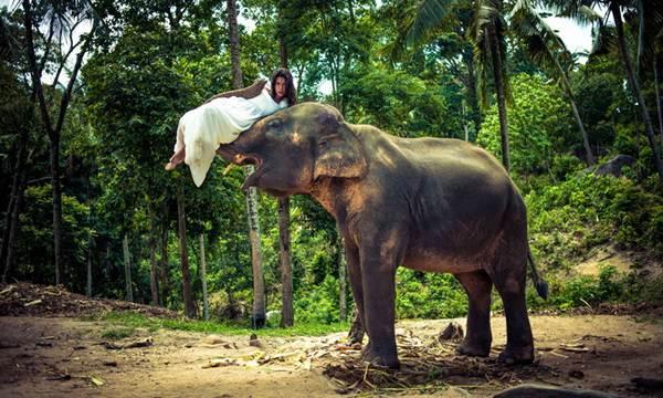 gadis foto di atas gajah