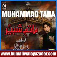 http://ishqehaider.blogspot.com/2013/11/muhammad-taha-nohay-2014.html