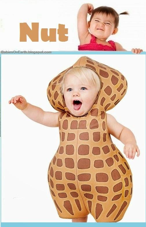Baby Nut