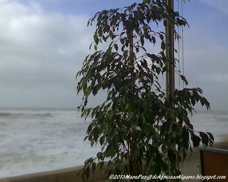 Cosy cafe and winter seas - Praia da Granja