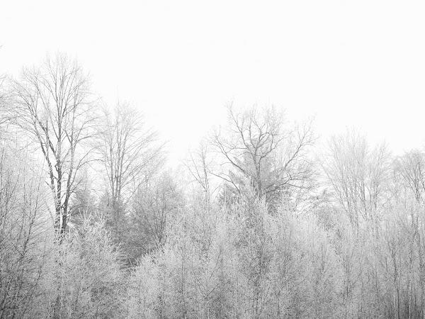 10 Christmas Blog Post Ideas