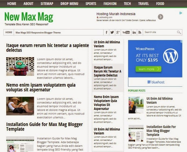 New max mag blogger template