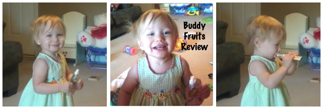Buddy Fruits Review