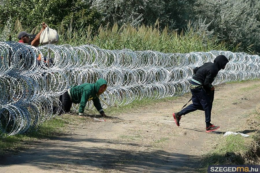 Hungarian Ambiance: Migrants invented new ways of defeating the ...