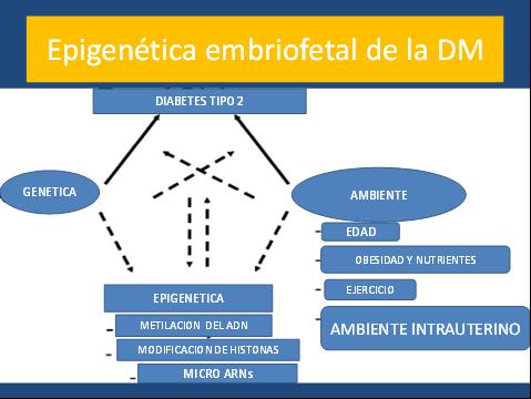 como prevenir la diabetes mellitus