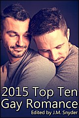 2015 Top Gay Romances