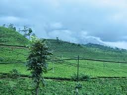 /2014/09/Pemandian-air-hangat-sari-ater-di-lembang.html