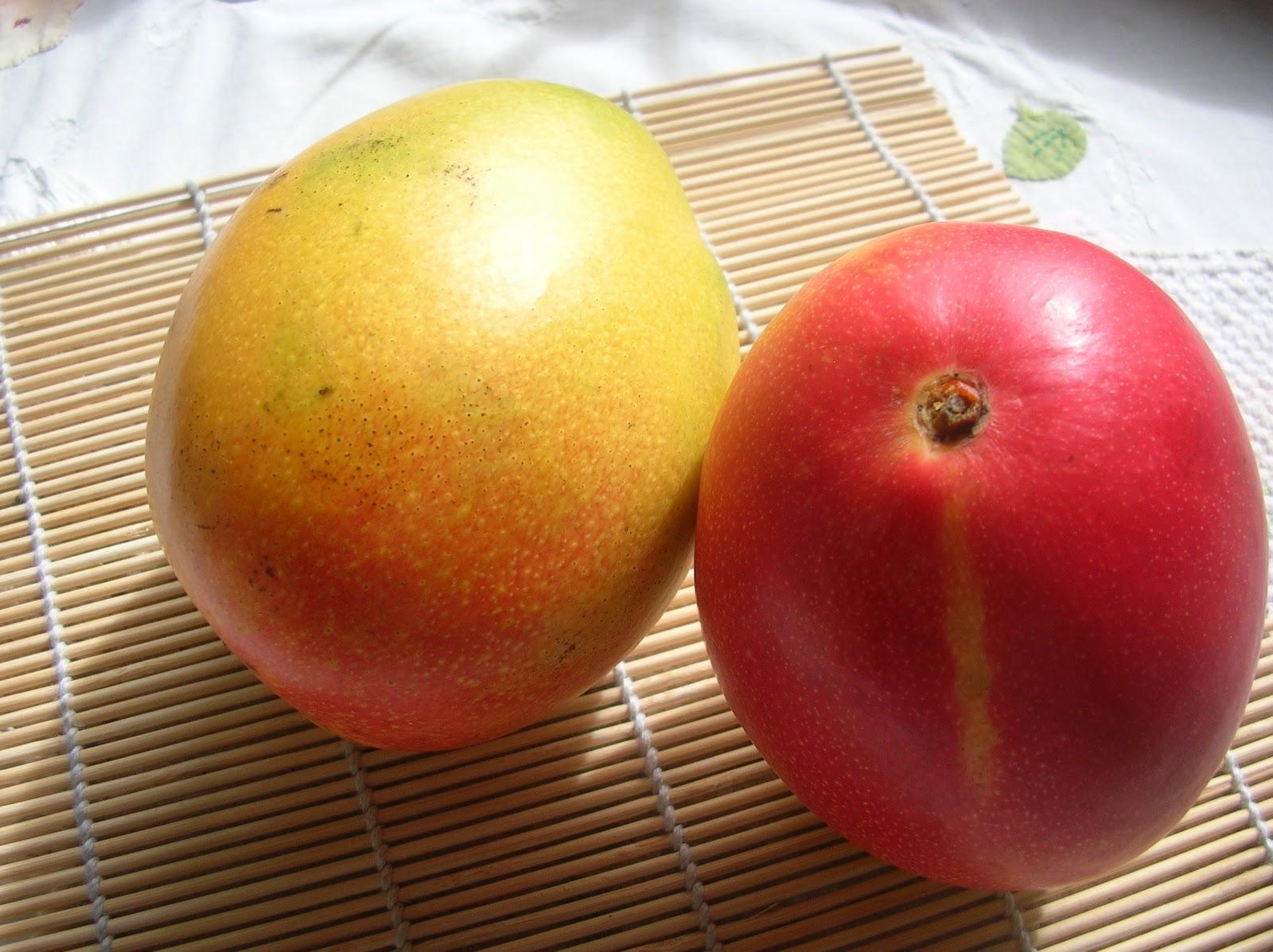 Aguadema z mango mang fera indica lennis for Cocinar con mango