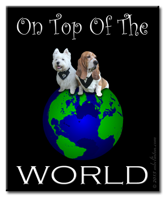 Basset Hound & Westie sitting on top of the world