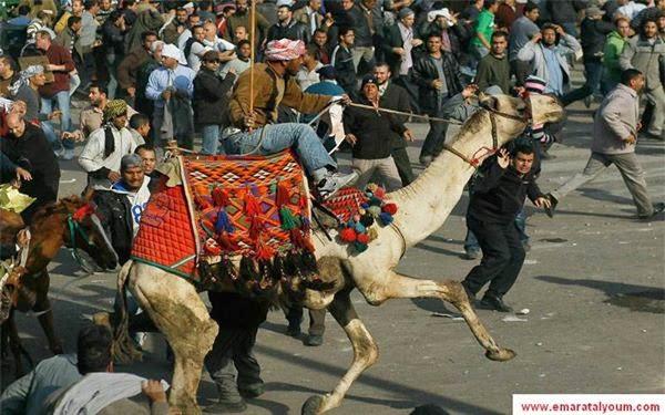 مفاجأة من العيار الثقيل بخصوص موقعة الجمل المشهورة بميدان التحرير !!!