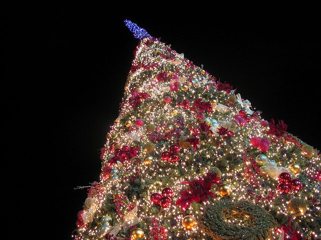 christmas tree in greece photo credit tilemahos efthimiadis - Greek Christmas