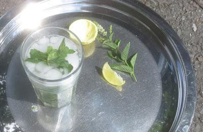 Mojito - der klassische kubanische Sommerdrink; #wirrettenwaszurettenist