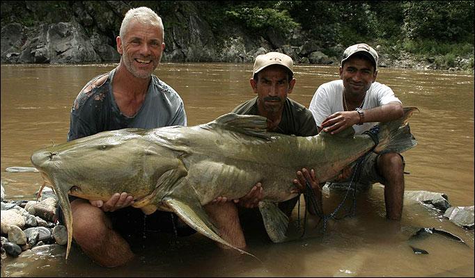 Ikan gigi besar