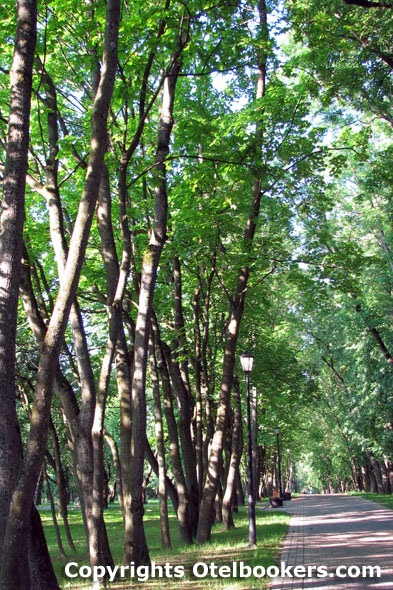 The Loshica Park - Belarus
