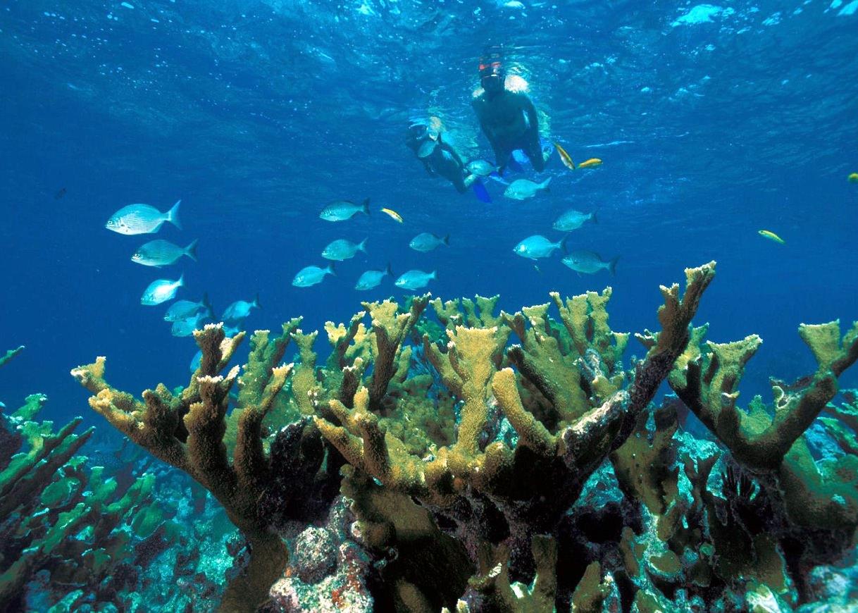 Perhentian Kecil Island Vacation Holiday