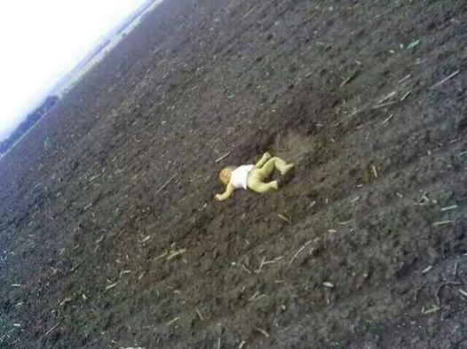 фото сбитого боинга над донбассом