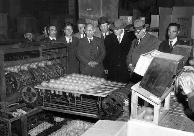Trong nhà máy sản xuất bóng đèn Tokyo Shibaura Electric Co ngày 25-1-1951