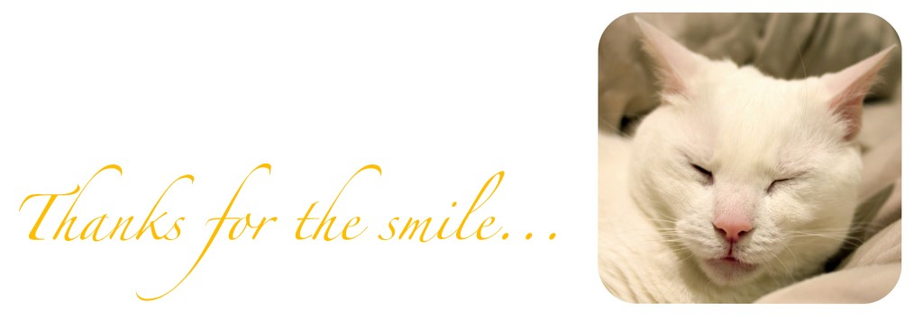 .:Thanks for the smile: 366 days of smiles in 2012:.