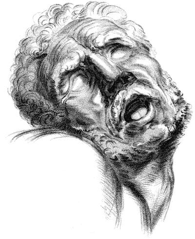 Laocoön by Charles Bell