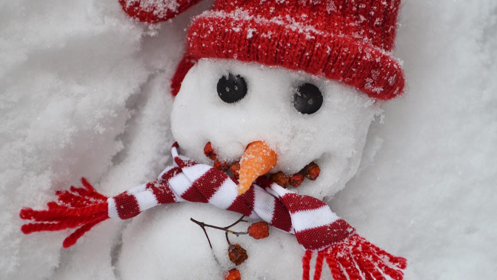 Beautiful-attractive-snowman-handmade-home-outdoor-craft-photos-HD-images.jpg