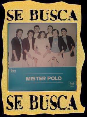MISTER POLO