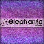 elephante poses