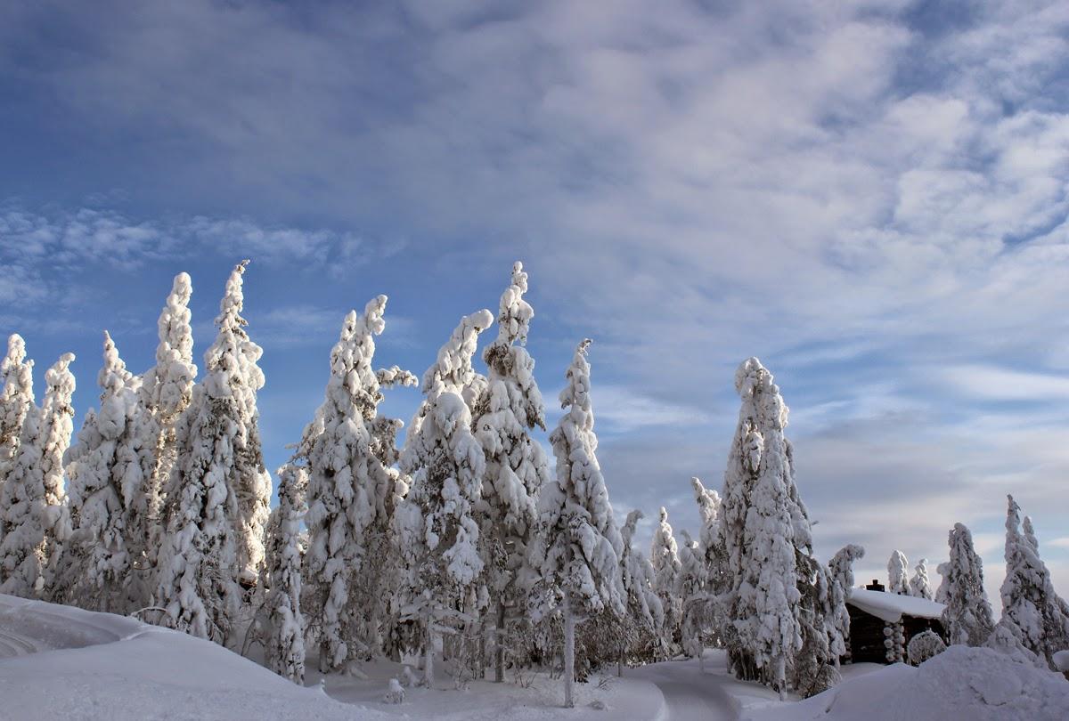 Winter wonderland: Lapland in Finland