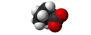 Prolin (Proline), Sumber, Fungsi, Manfaat, Dosis dan Efek samping