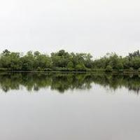 brunei Lumut Lake