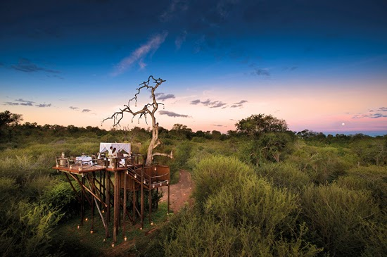 Safari Fusion blog | A bed with a view | Romance African style at Lion Sands Chalkley Treehouse, Kruger South Africa