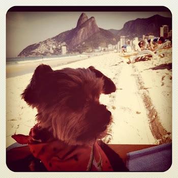 Lilly in Rio de Janeiro - Brazil