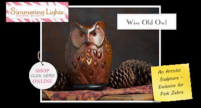 owl decor image