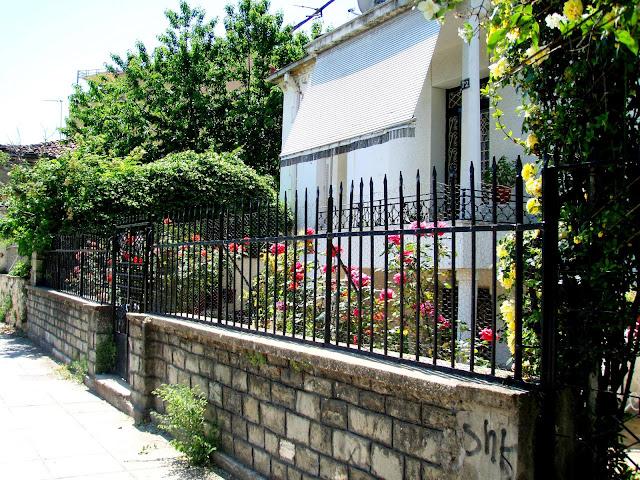 red rose garden house