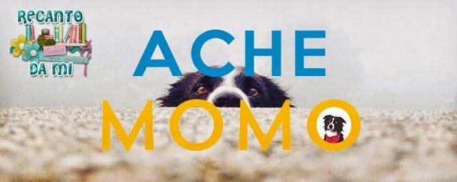 Resenha - Ache Momo Andrew Knapp