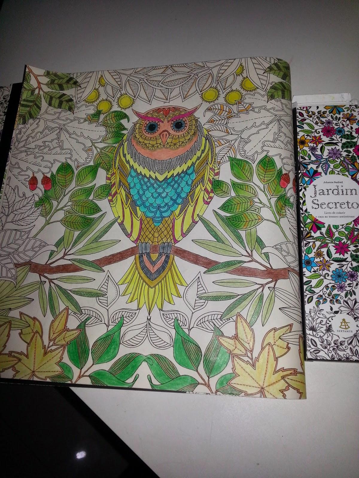 ideias para pintar livro jardim secreto : ideias para pintar livro jardim secreto:Jardim Secreto – Quem Lê faz seu Filme