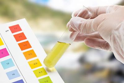 Cara Mengurangi Kelebihan Protein Dalam Urine